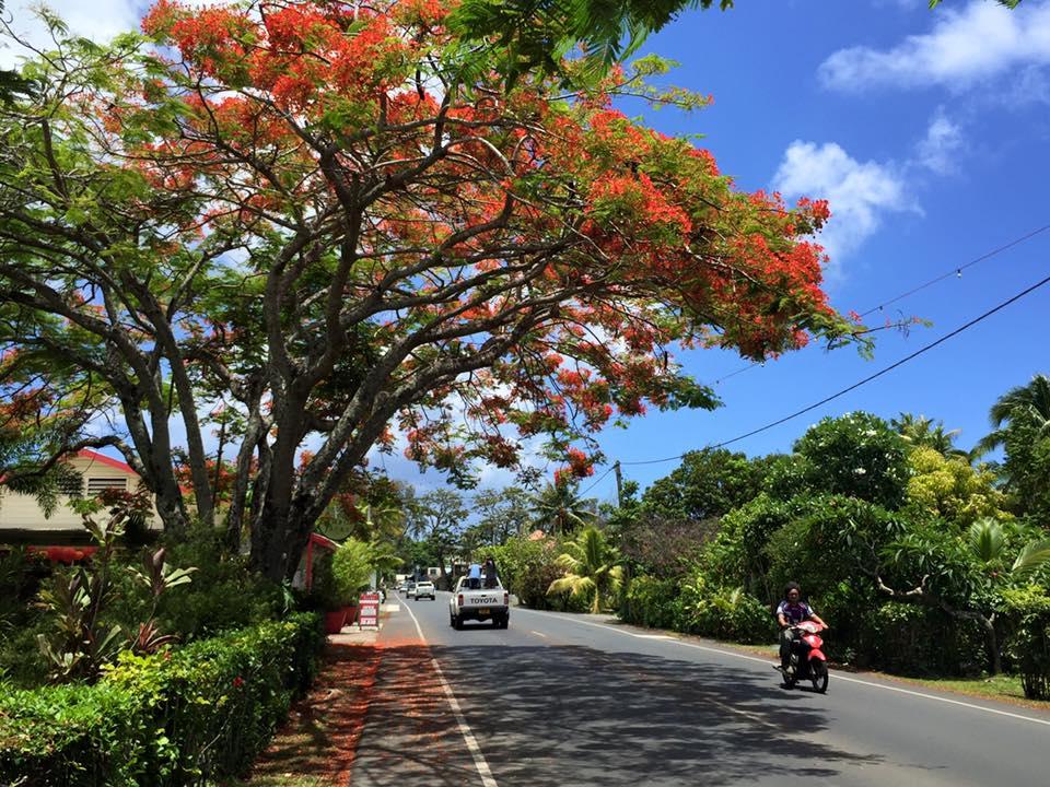 Rarotonga street