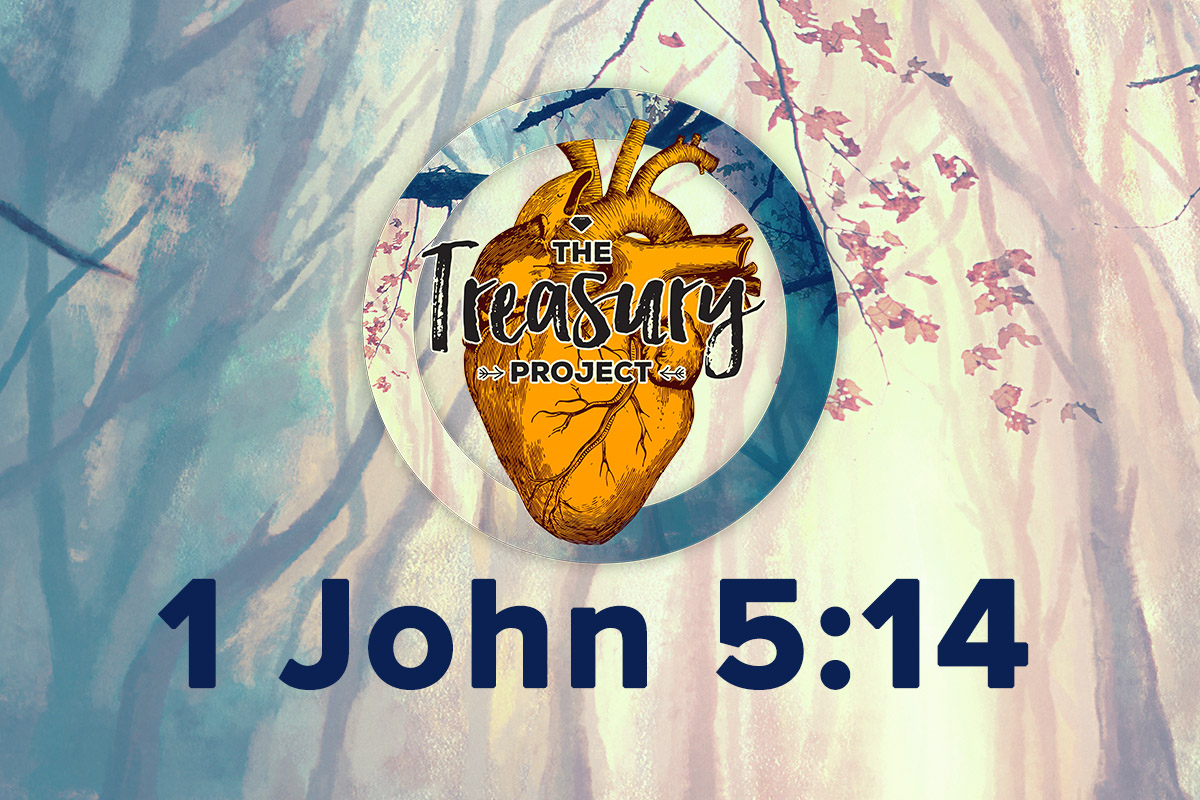 1 John 5:14