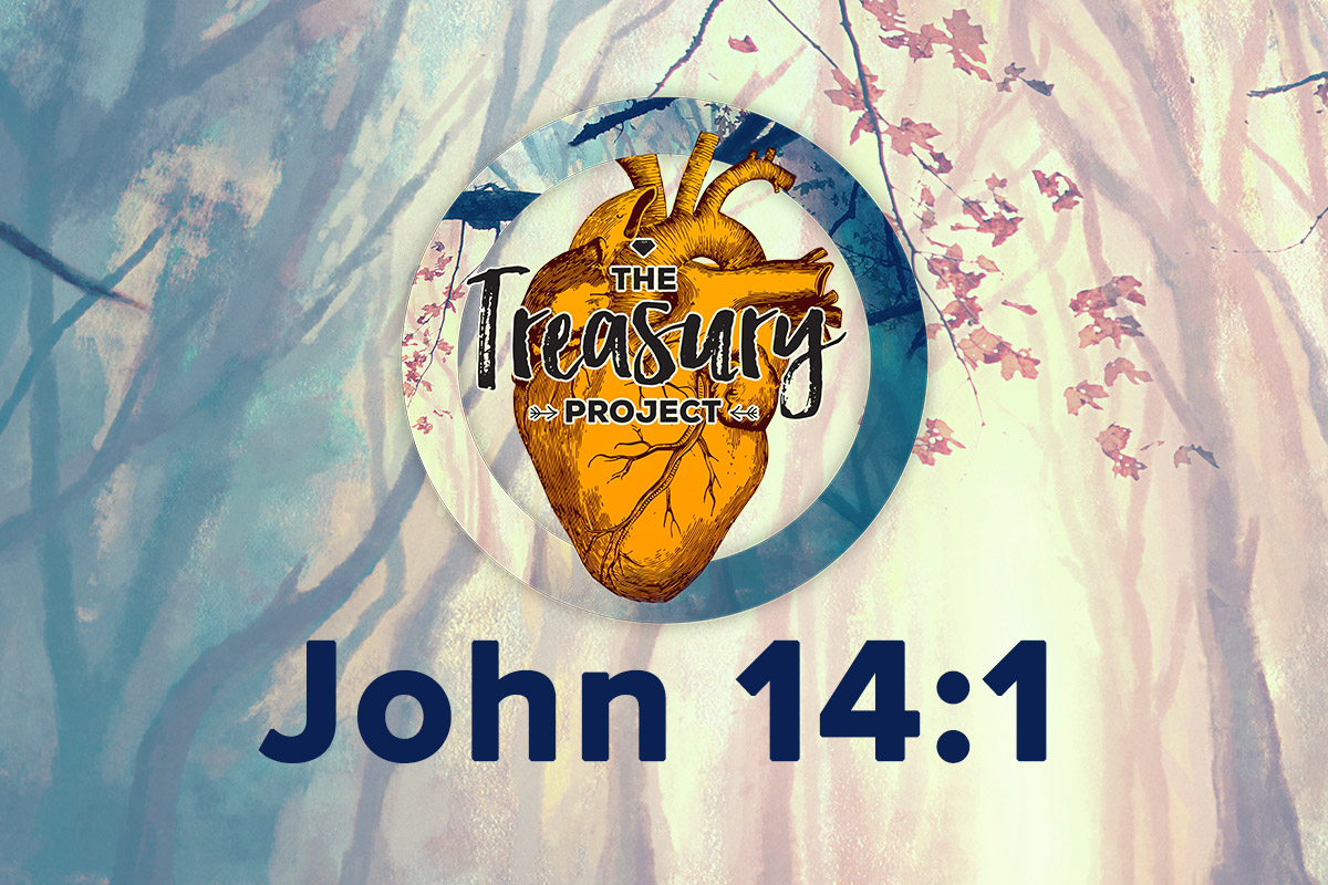 Treasury Project - Week 13 - John 14:1