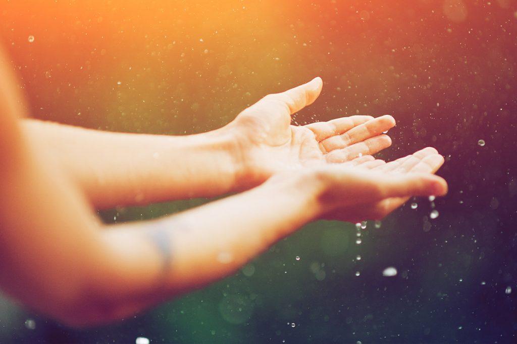 hands receiving rain