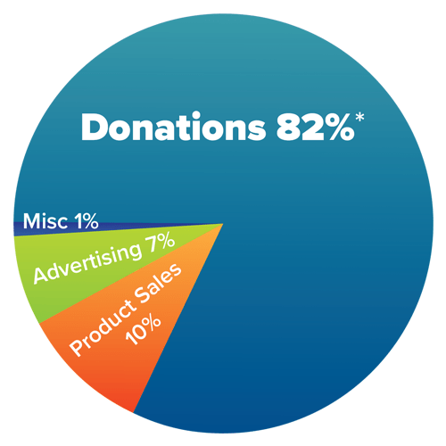Vision's Income Pie Chart