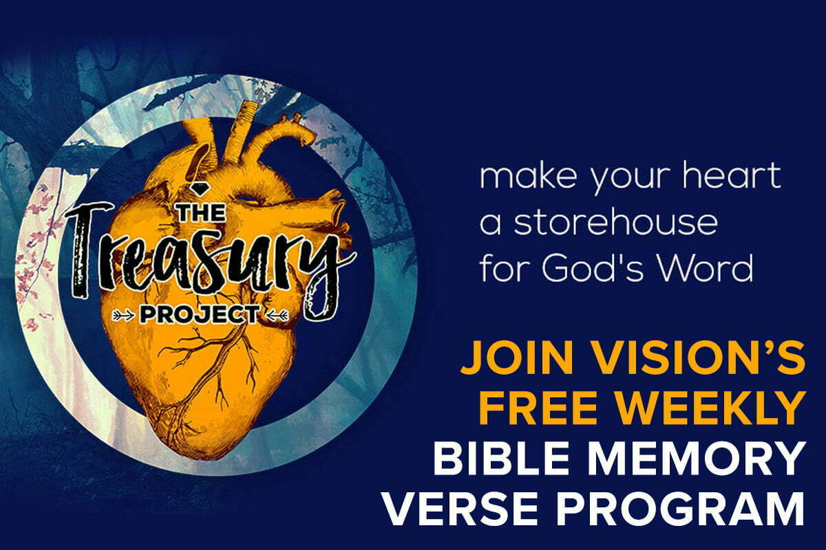 Join Vision's Treasury Project